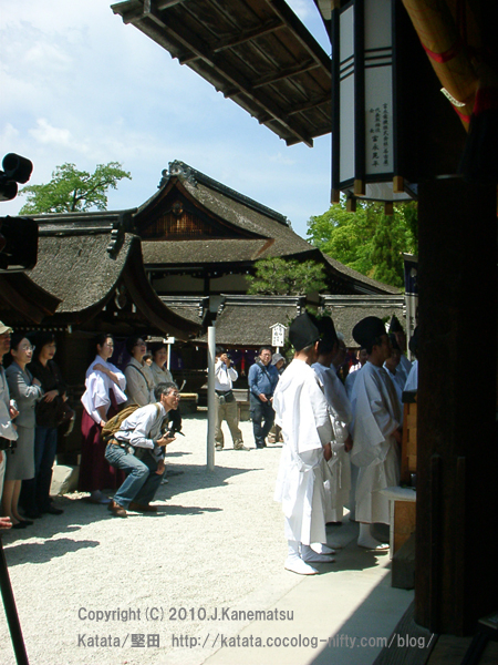 本殿の奥を覗き込む観光客の男性