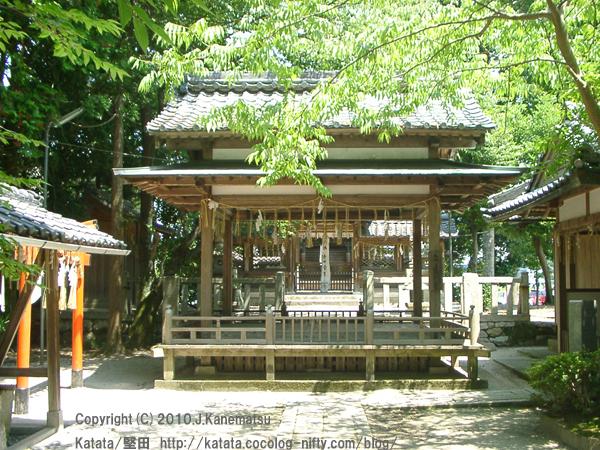 伊豆神田神社の社殿と御神木