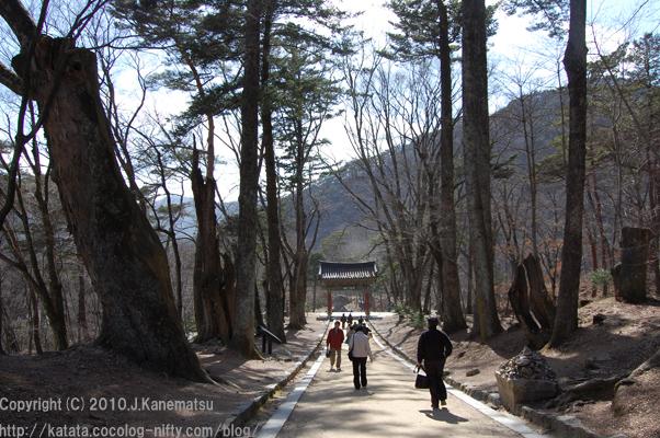 鳳凰門から一柱門への坂道