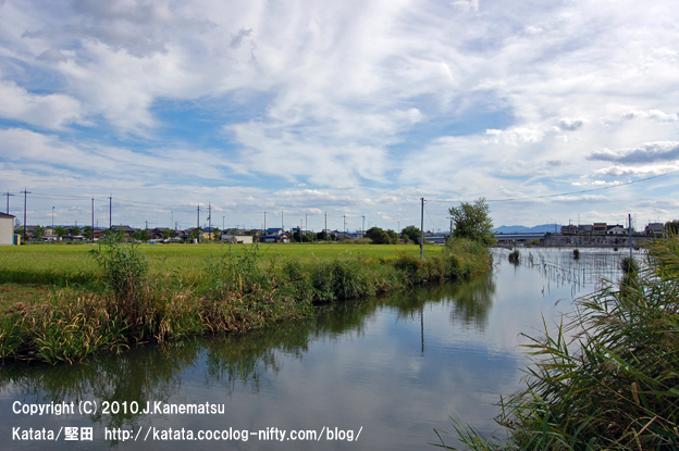 9月の堅田内湖
