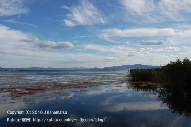 秋の水辺 (琵琶湖畔)