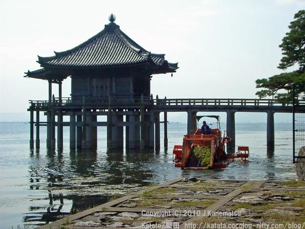 専用船での水草刈取作業の様子、浮御堂前にて