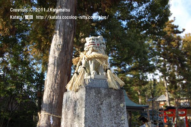 伊豆神社の狛犬 (左側で口を閉じている狛犬=吽形(うんぎょう) )