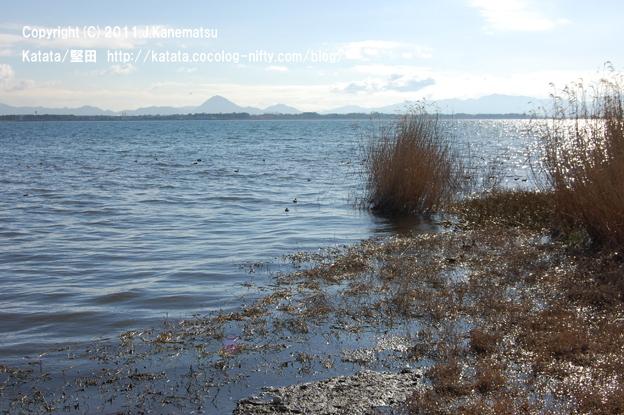 琵琶湖と三上山(堅田港付近にて)