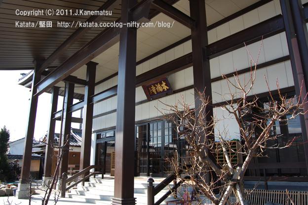 本福寺の梅の木と本堂