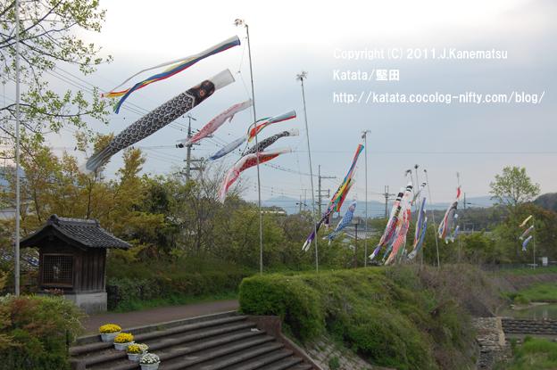 地蔵堂、お花、新緑、鯉のぼり、天神川