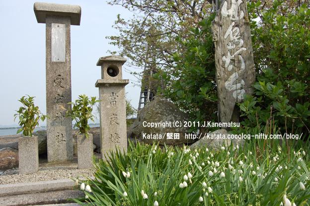 スノーフレークの花と常夜灯(琵琶湖畔・出島灯台前にて)