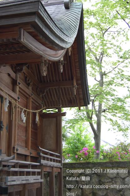 ツツジと新緑の美しい神田神社