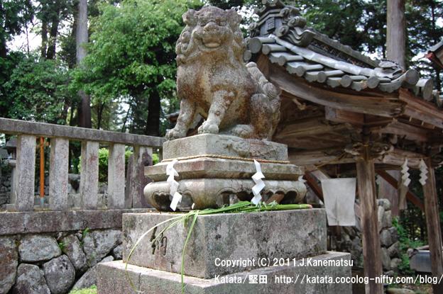 融神社の狛犬 (右側で口を開けている狛犬=阿形)