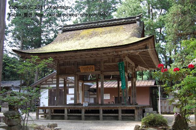 寛政9年に作られた拝殿と、赤い花(シャクナゲ)