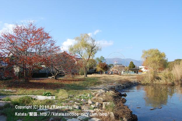 琵琶湖畔の紅葉(今堅田)