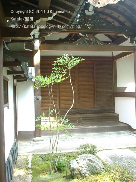 祥瑞寺とナンテンの木
