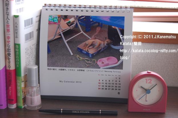 2012年6月のカレンダー(水原華城の売店の犬)