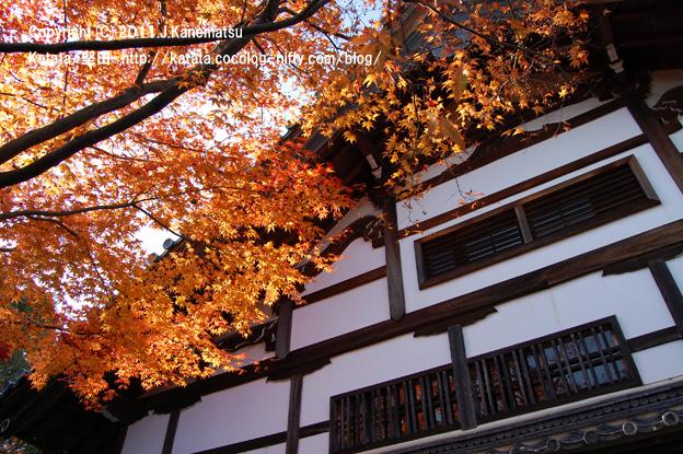 祥瑞寺の本堂と紅葉