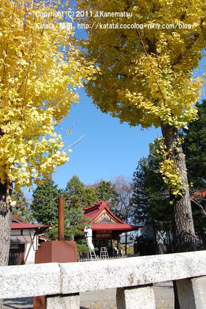 11月の神田神社にて(銀杏の木の向こうには・・・)