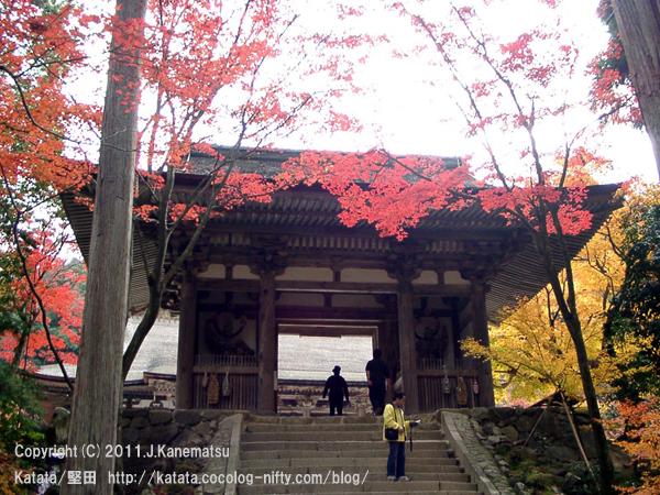 湖東三山・西明寺の紅葉(二天門の前で)
