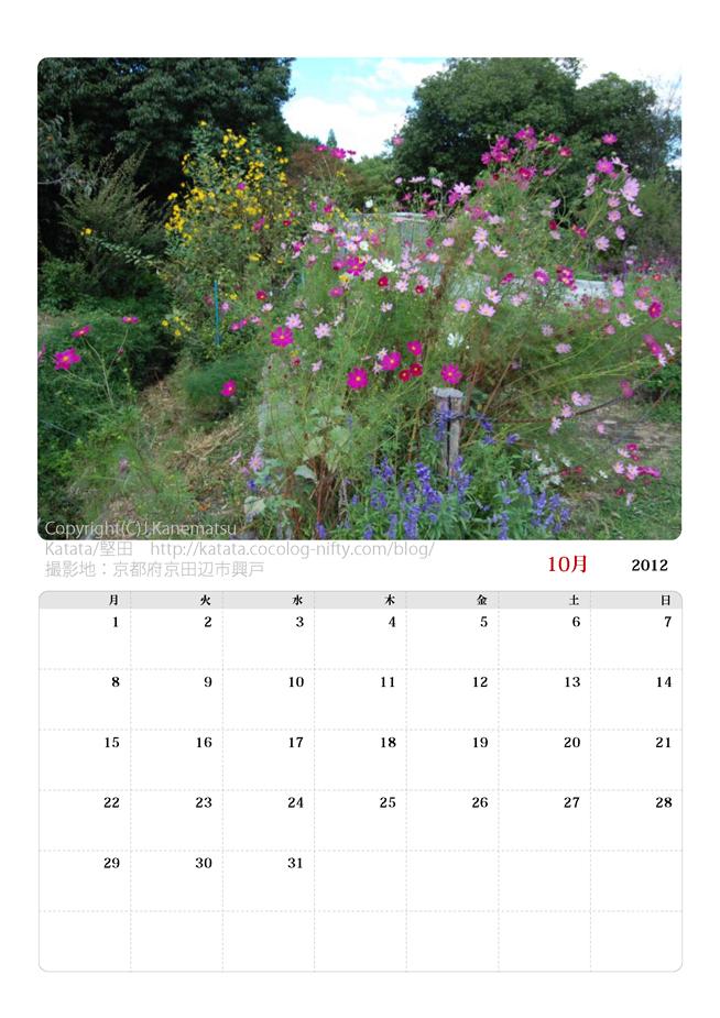 2012年10月カレンダー・京田辺のコスモス