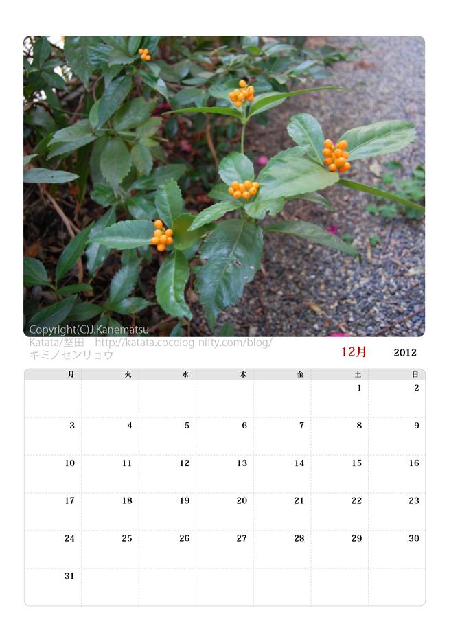 2012年12月カレンダー・キミノセンリョウ