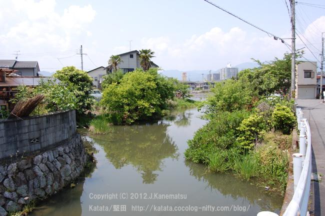 琵琶湖のラグーン(潟湖)、堅田内湖2