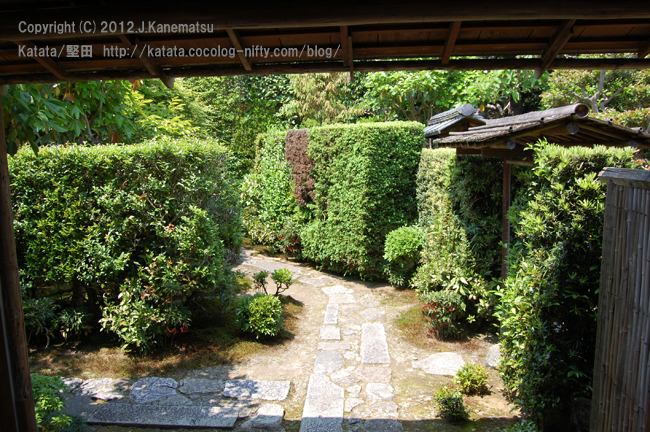 居初氏庭園の緑の垣根
