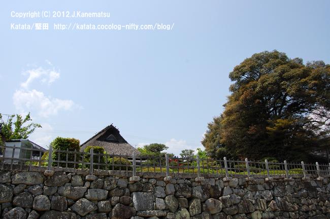 琵琶湖岸から見た居初邸