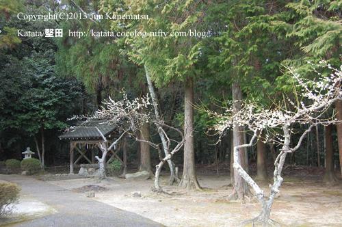 鞍掛神社と梅の花