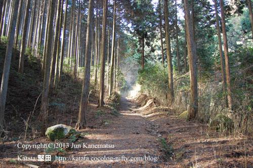 崇福寺跡へ続く山道