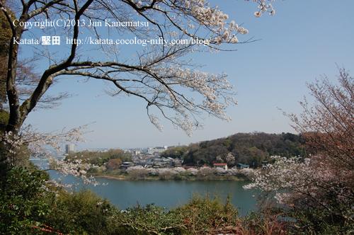 眼下に流れる春の瀬田川(石山寺の月見亭から)