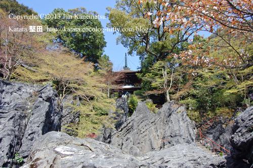 石山寺多宝塔と硅灰石、良弁杖桜