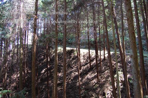 金勝寺へと登る林道