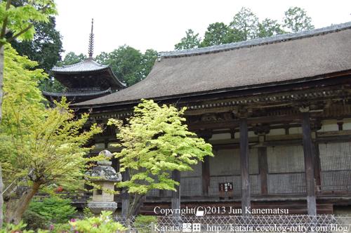 西寺(常楽寺)、本堂と三重塔