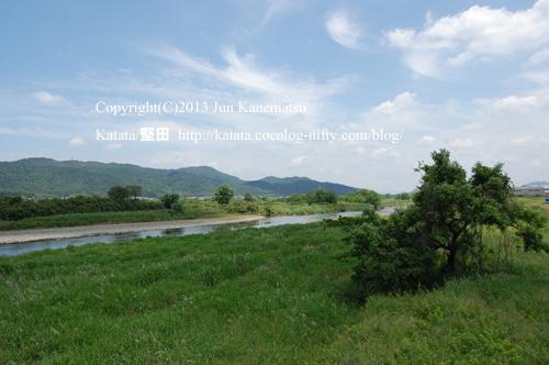 初夏の空と緑(野洲川の中郡橋から、滋賀県湖南市)