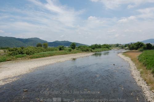 初夏の野洲川(中郡橋から、滋賀県湖南市)