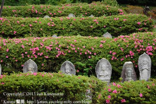 正福寺の石仏とツツジー1(滋賀県湖南市)