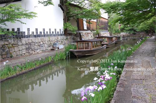菖蒲の咲く八幡堀-2(八幡堀めぐりの乗り場と舟とかわらミュージアム)