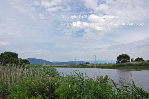 水郷の向こうに繖山(撮影地:近江八幡市北之庄町)