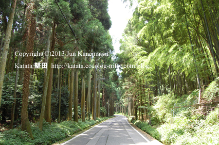 林の中を抜ける(滋賀県米原市)