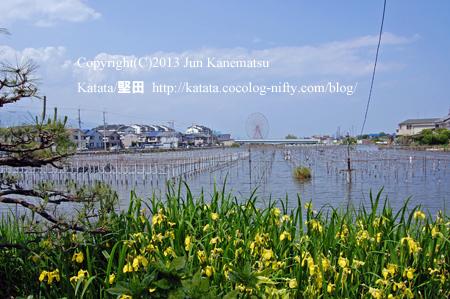 春の堅田内湖の向こうに、観覧車(イーゴス108)