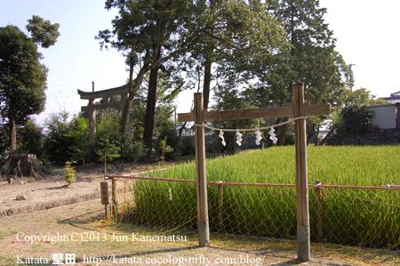 小野神社の神田