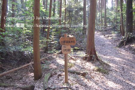 山道は広くなり、小野道風神社への矢印が現われる