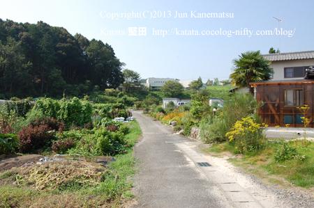 小野児童館へ続くゆるやかな坂道と、色とりどりの花が咲く畑