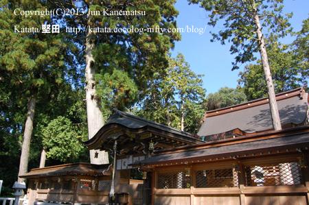 田村神社本殿とご神木(甲賀市土山町)