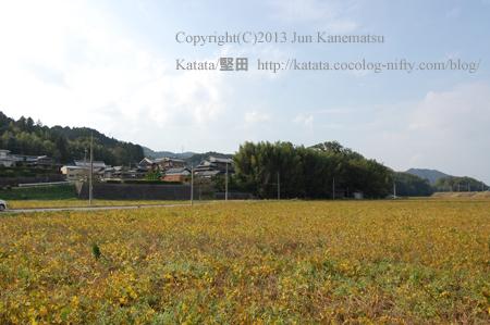笠山神社の竹林(甲賀市水口町高山)
