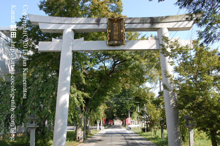 矢川神社の鳥居