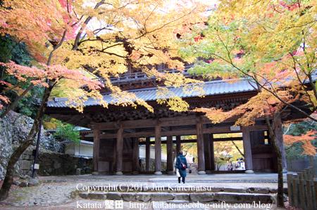 永源寺の紅葉-8
