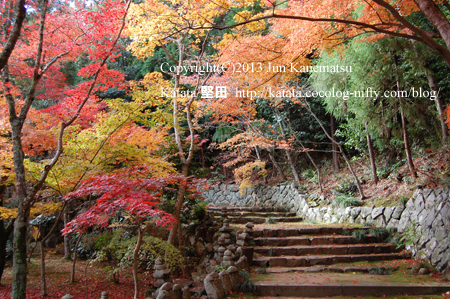 紅葉の瓦屋寺